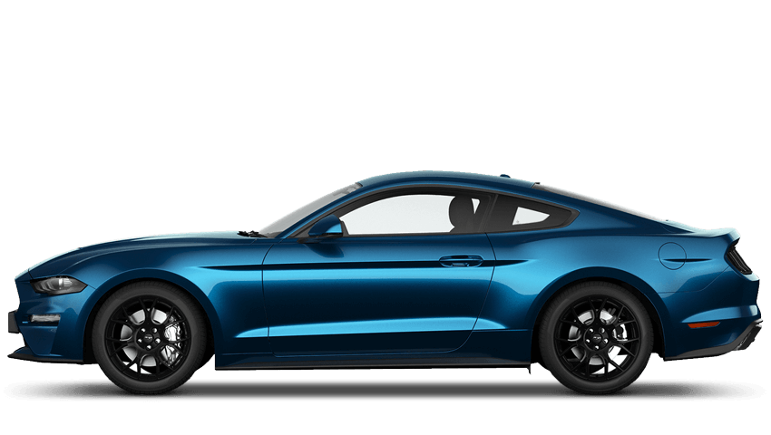 Ford Mustang Fastback New