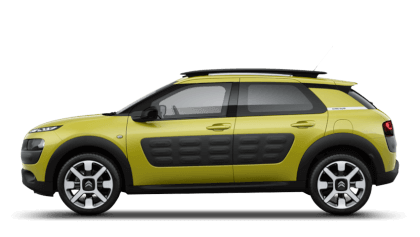 C4 Cactus Flair Edition