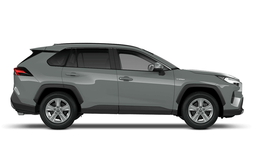 RAV4 New Icon